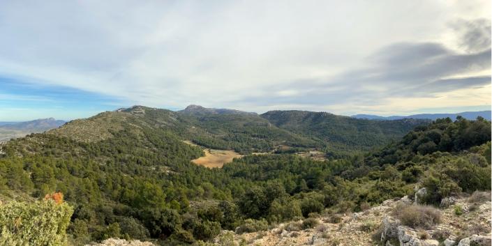 Vista aerea Cova de Bilimini